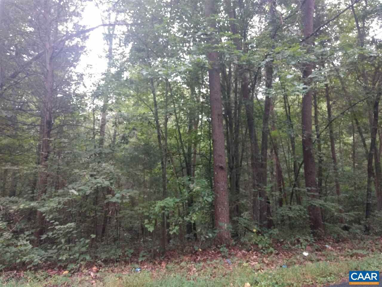 Land for Sale at CAMPBELL MEADOWS Road Arvonia, Virginia 23004 United States