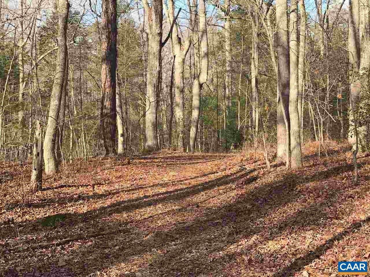 Land for Sale at TBD WESLEY CHAPEL Road Free Union, Virginia 22940 United States