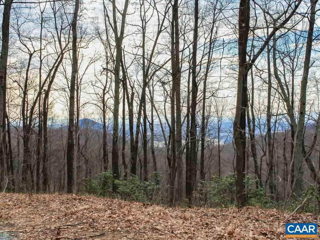 Land for Sale at WESLEY CHAPEL Road Free Union, Virginia 22940 United States
