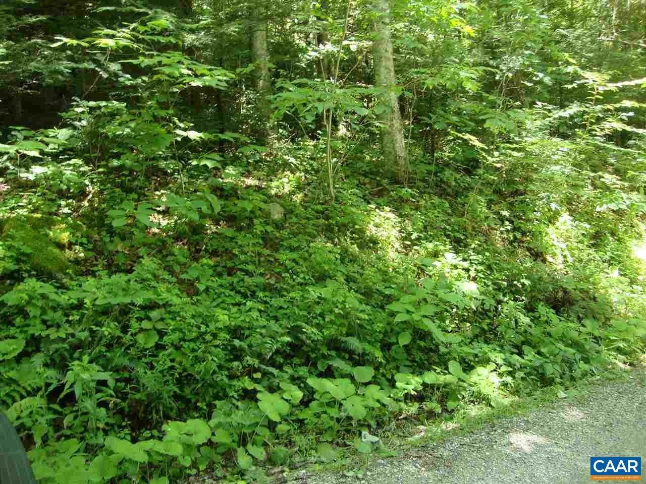 Land for Sale at ZINKS MILL SCHOOL Road Montebello, Virginia 24464 United States