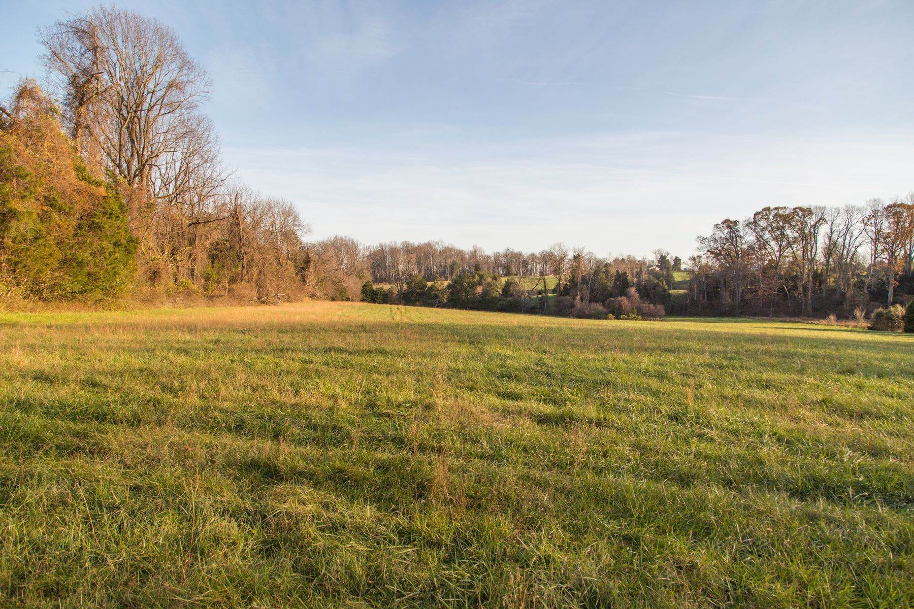 32. Land for Sale at 0 Stony Point Pass Keswick, Virginia 22947 United States