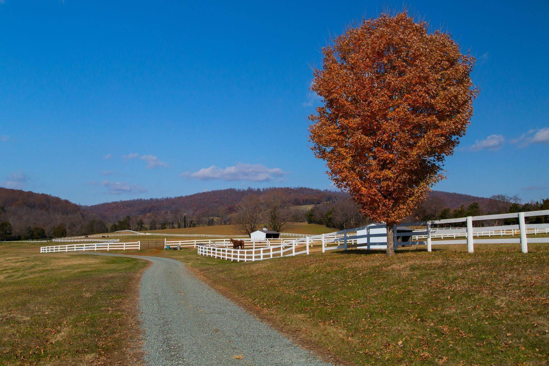 37. Land for Sale at 0 Springdale Drive Keswick, Virginia 22947 United States