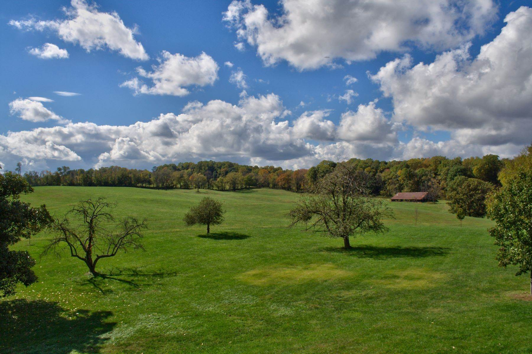 32. Single Family Homes for Sale at White Hart 5785 Stony Point Rd Barboursville, Virginia 22923 United States