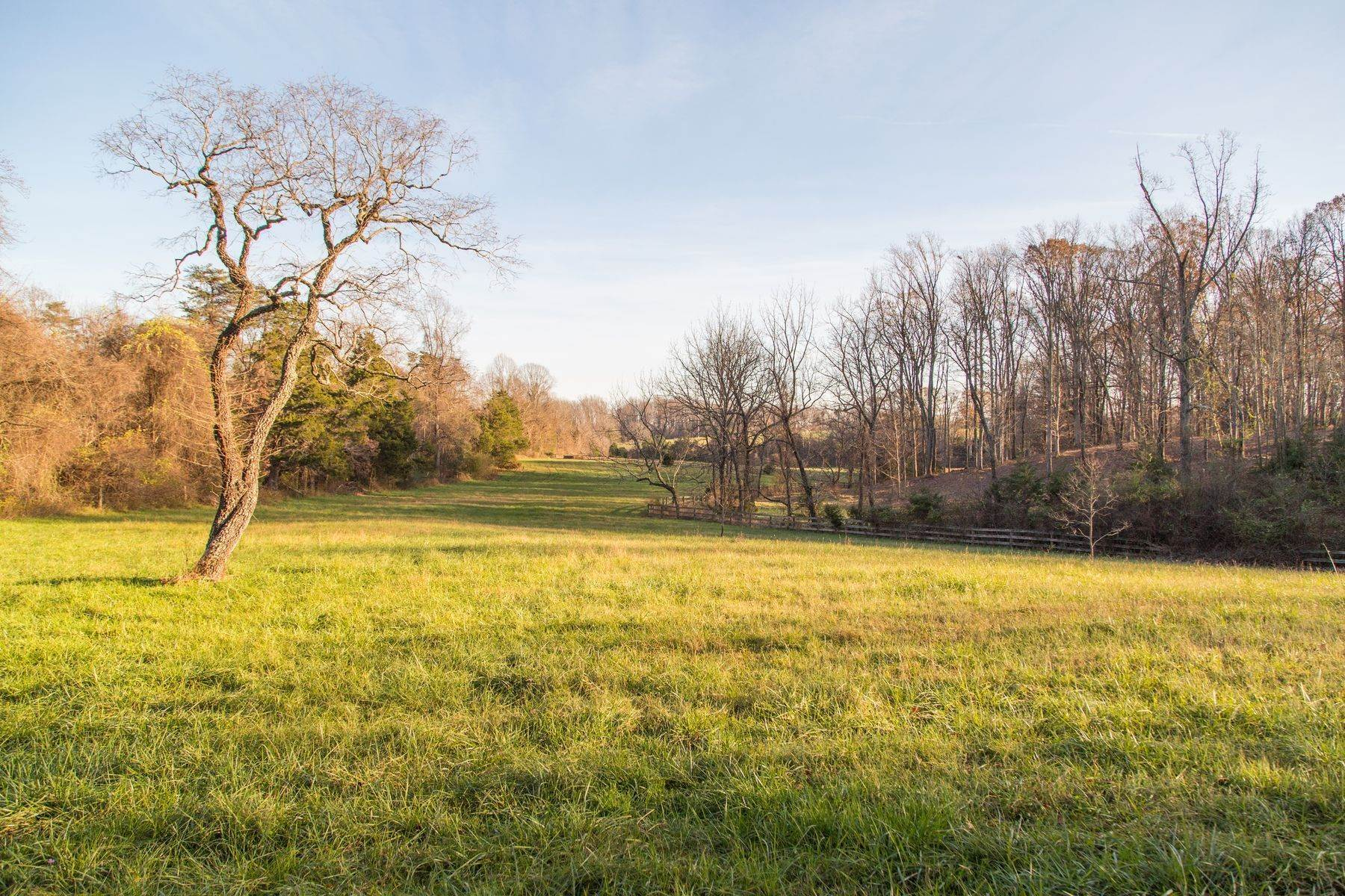 24. Land for Sale at 0 Stony Point Pass Keswick, Virginia 22947 United States