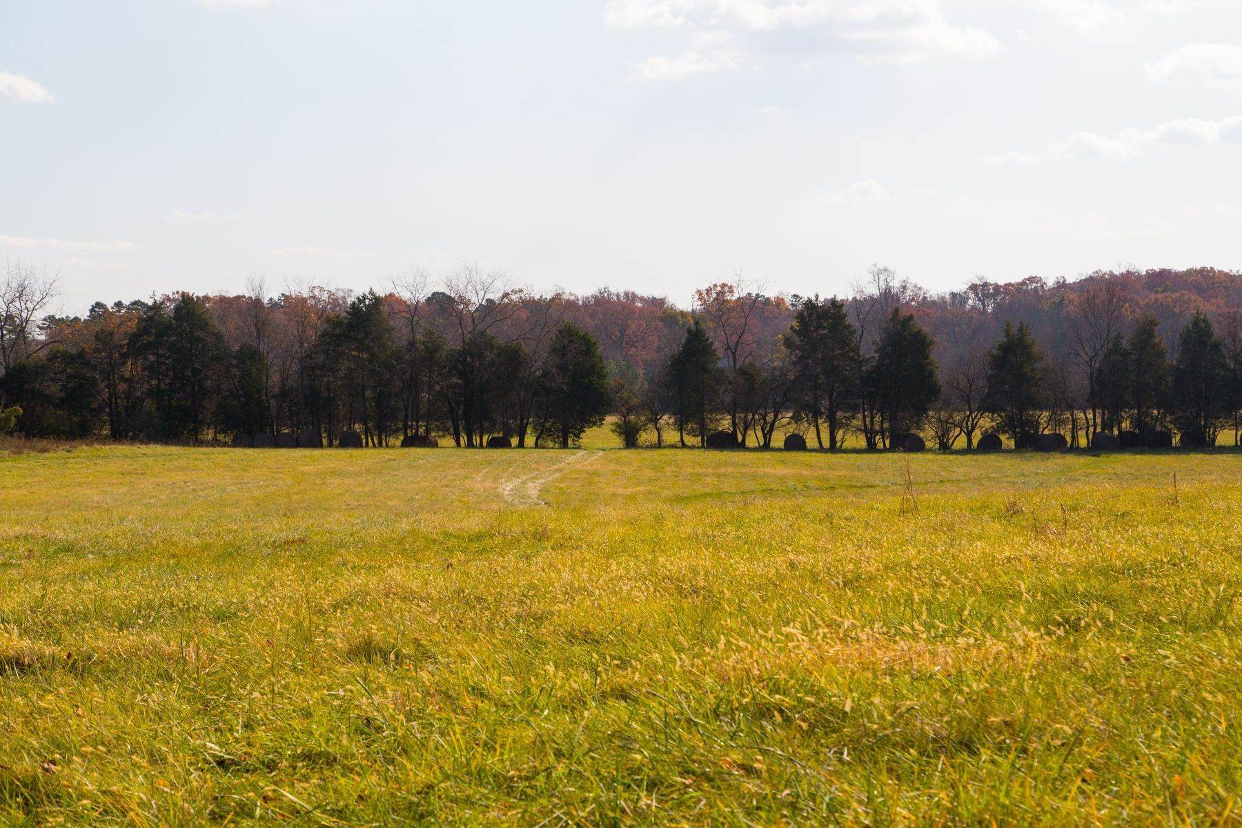 40. Land for Sale at 0 Springdale Drive Keswick, Virginia 22947 United States