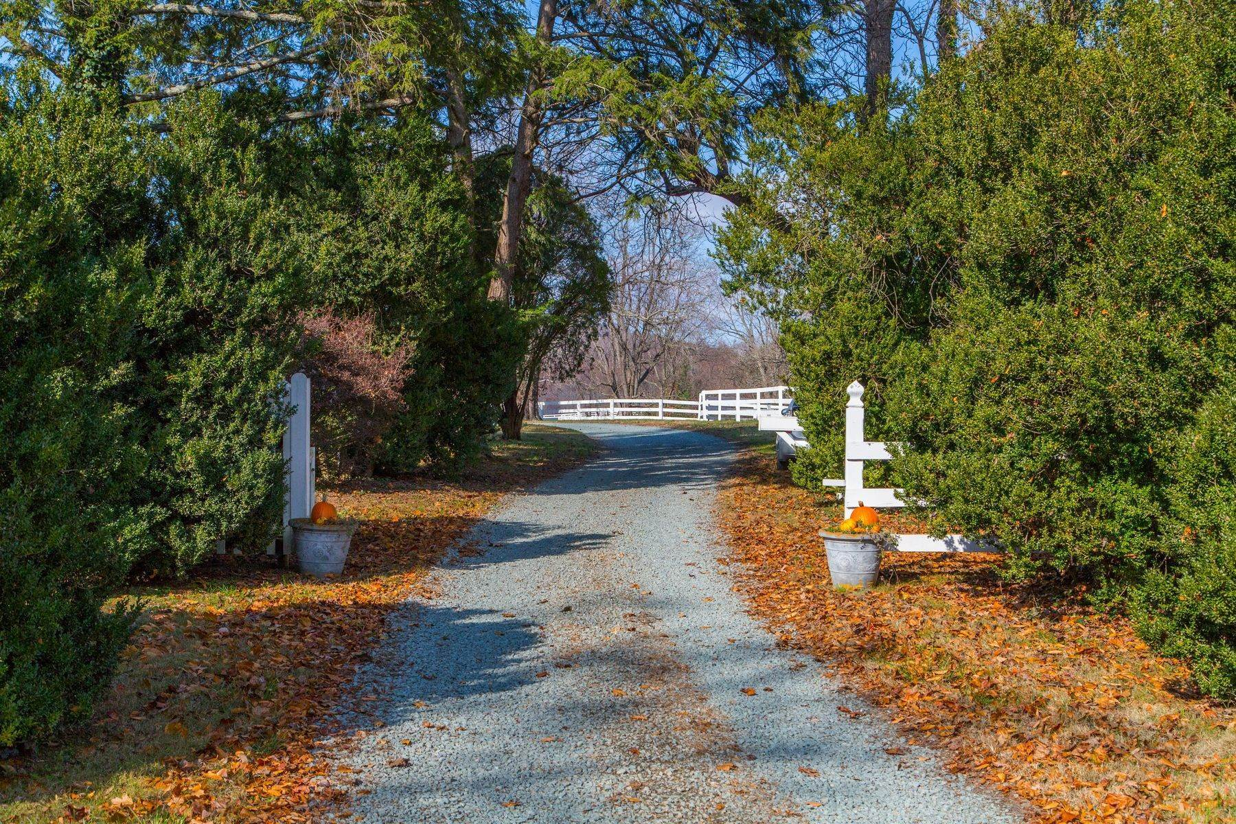 27. Single Family Homes for Sale at 0 A Springdale Drive Keswick, Virginia 22947 United States