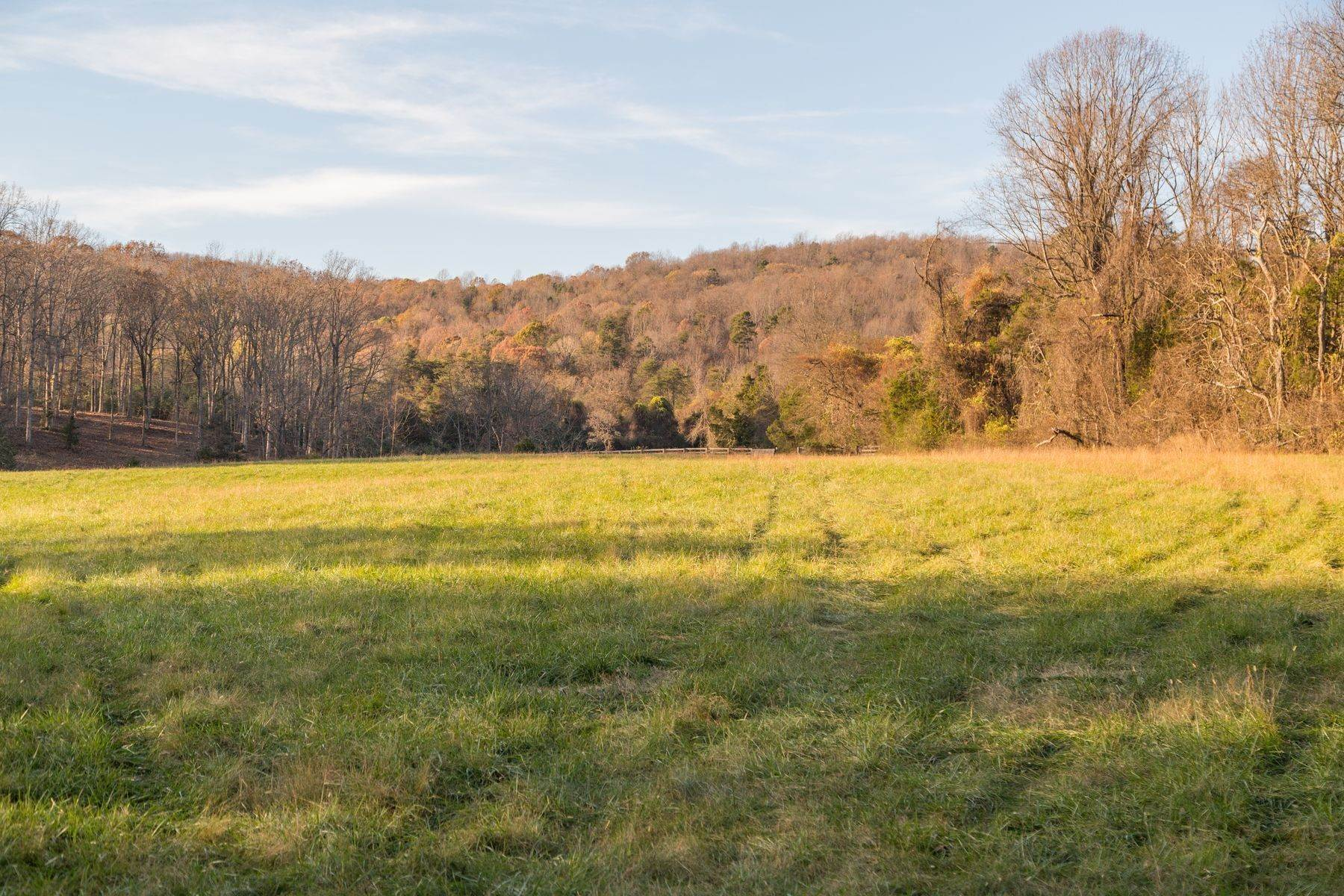 36. Land for Sale at 0 Stony Point Pass Keswick, Virginia 22947 United States