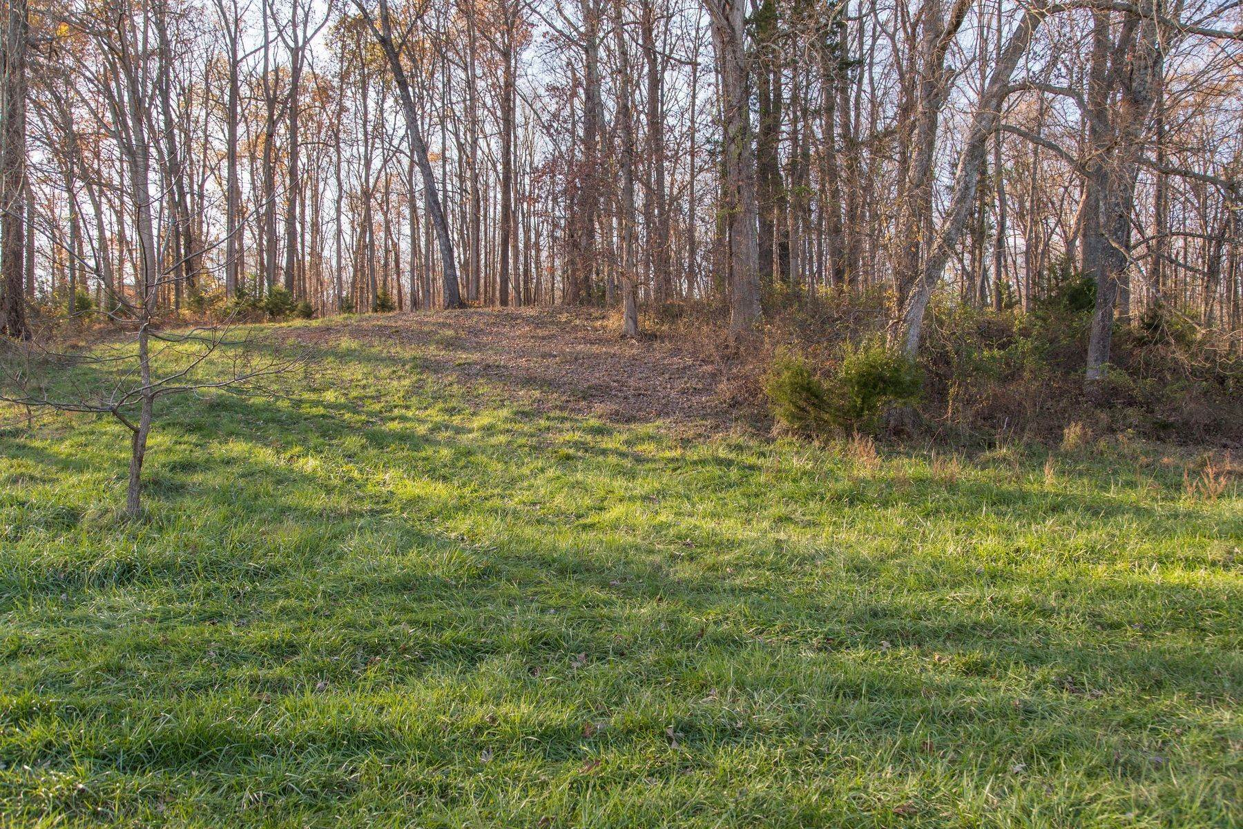 22. Land for Sale at 0 Stony Point Pass Keswick, Virginia 22947 United States