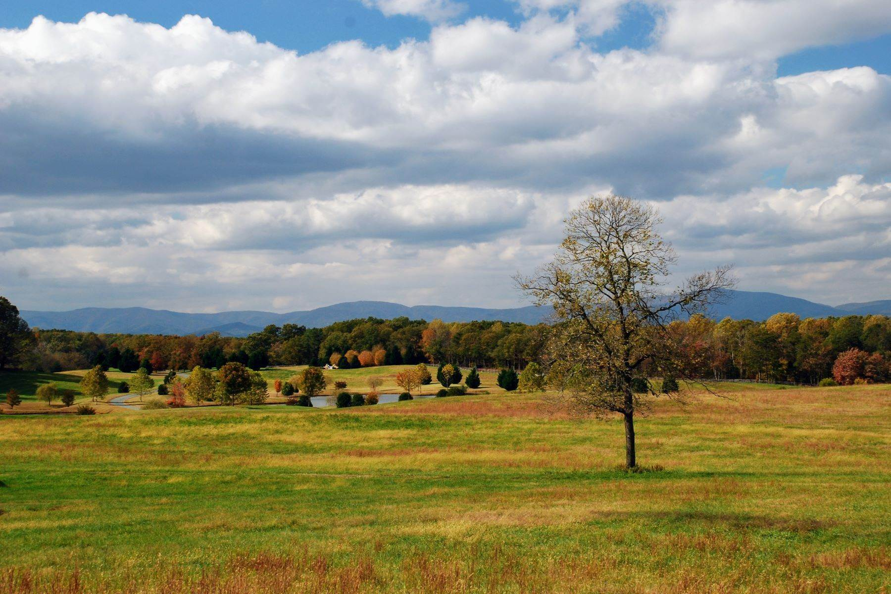 15. Single Family Homes for Sale at White Hart 5785 Stony Point Rd Barboursville, Virginia 22923 United States