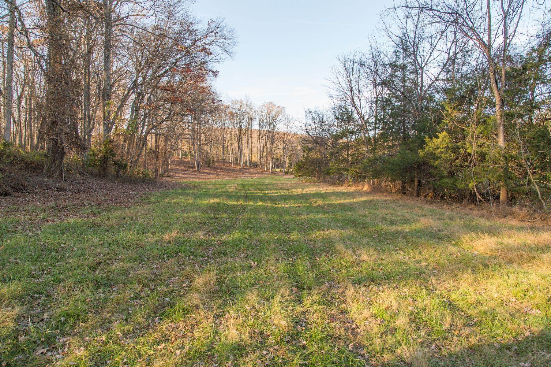 20. Land for Sale at 0 Stony Point Pass Keswick, Virginia 22947 United States