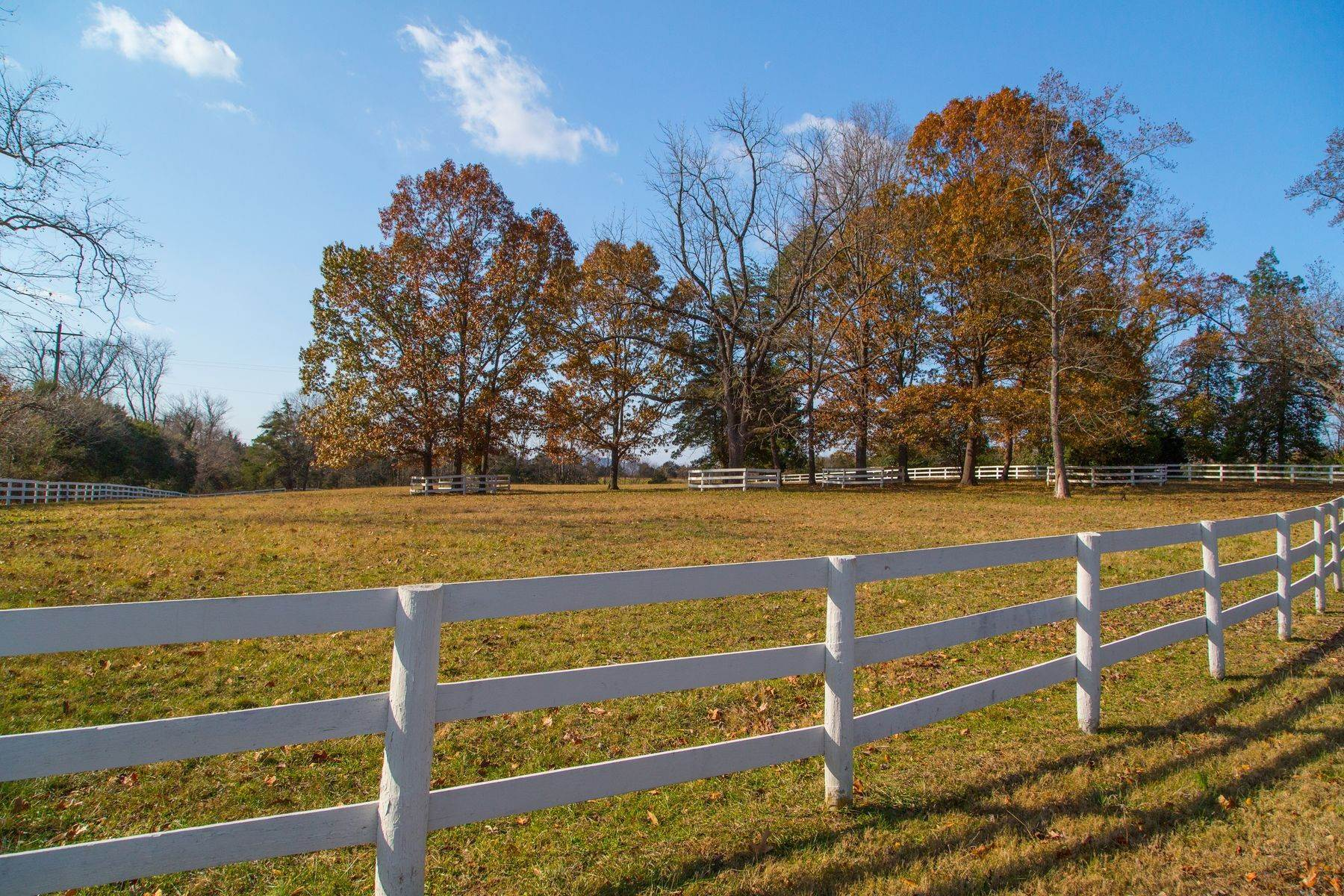 20. Land for Sale at 0 Springdale Drive Keswick, Virginia 22947 United States
