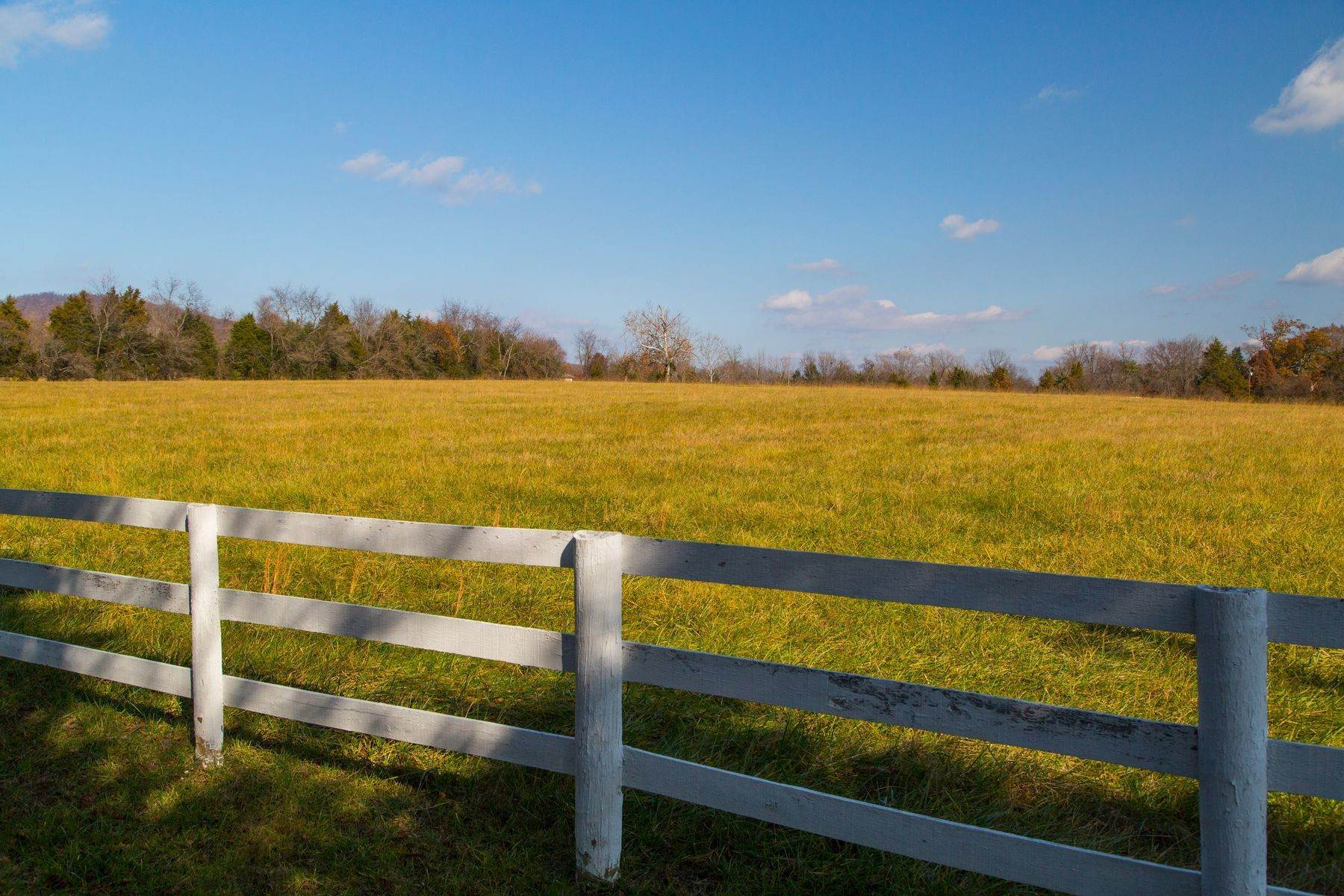 41. Land for Sale at 0 Springdale Drive Keswick, Virginia 22947 United States