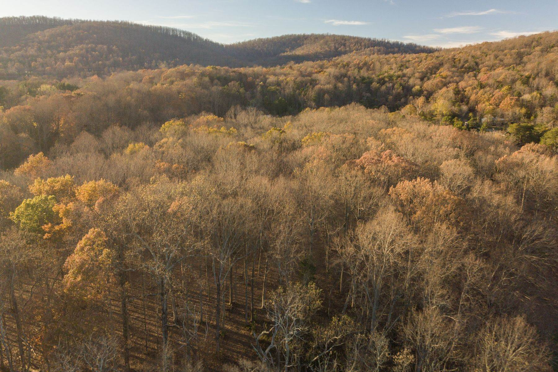 12. Land for Sale at 0 Stony Point Pass Keswick, Virginia 22947 United States