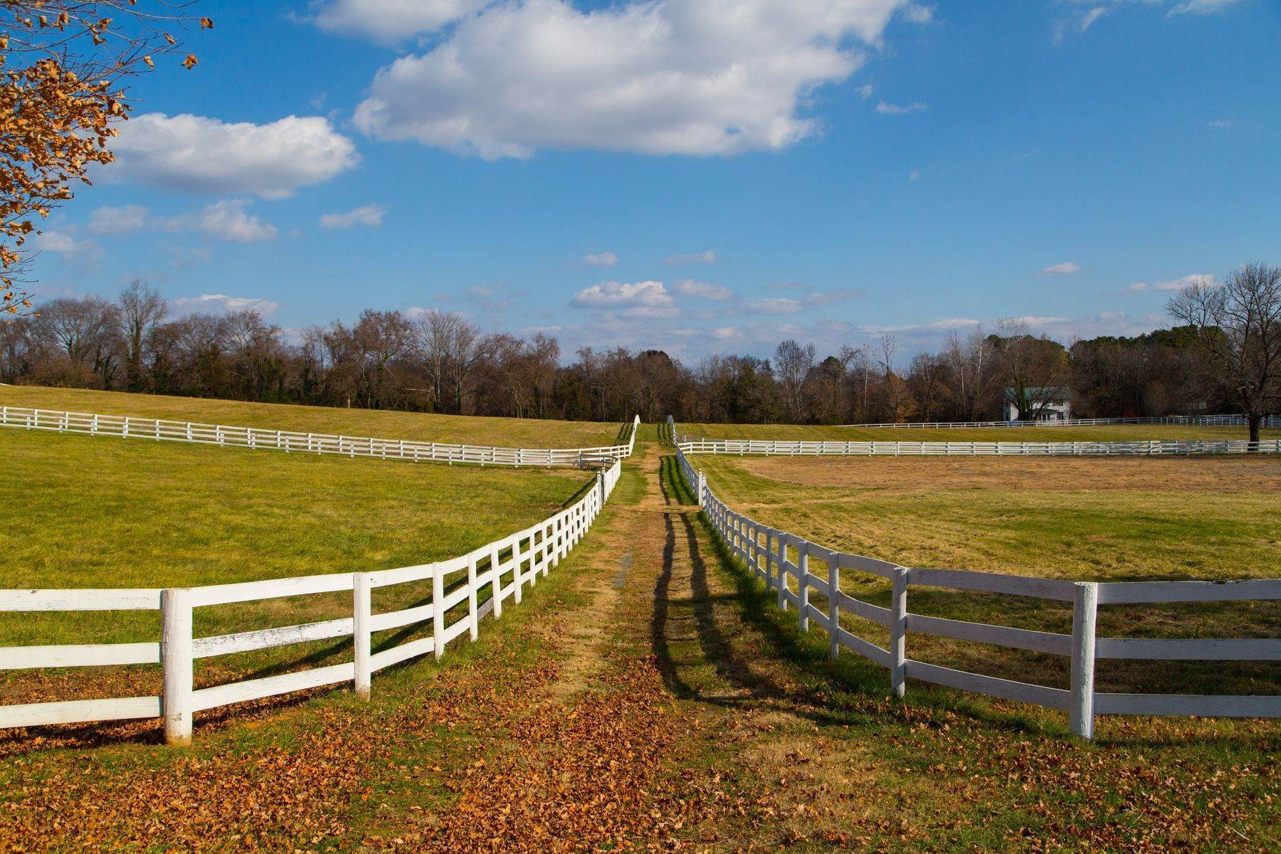 29. Land for Sale at 0 Springdale Drive Keswick, Virginia 22947 United States