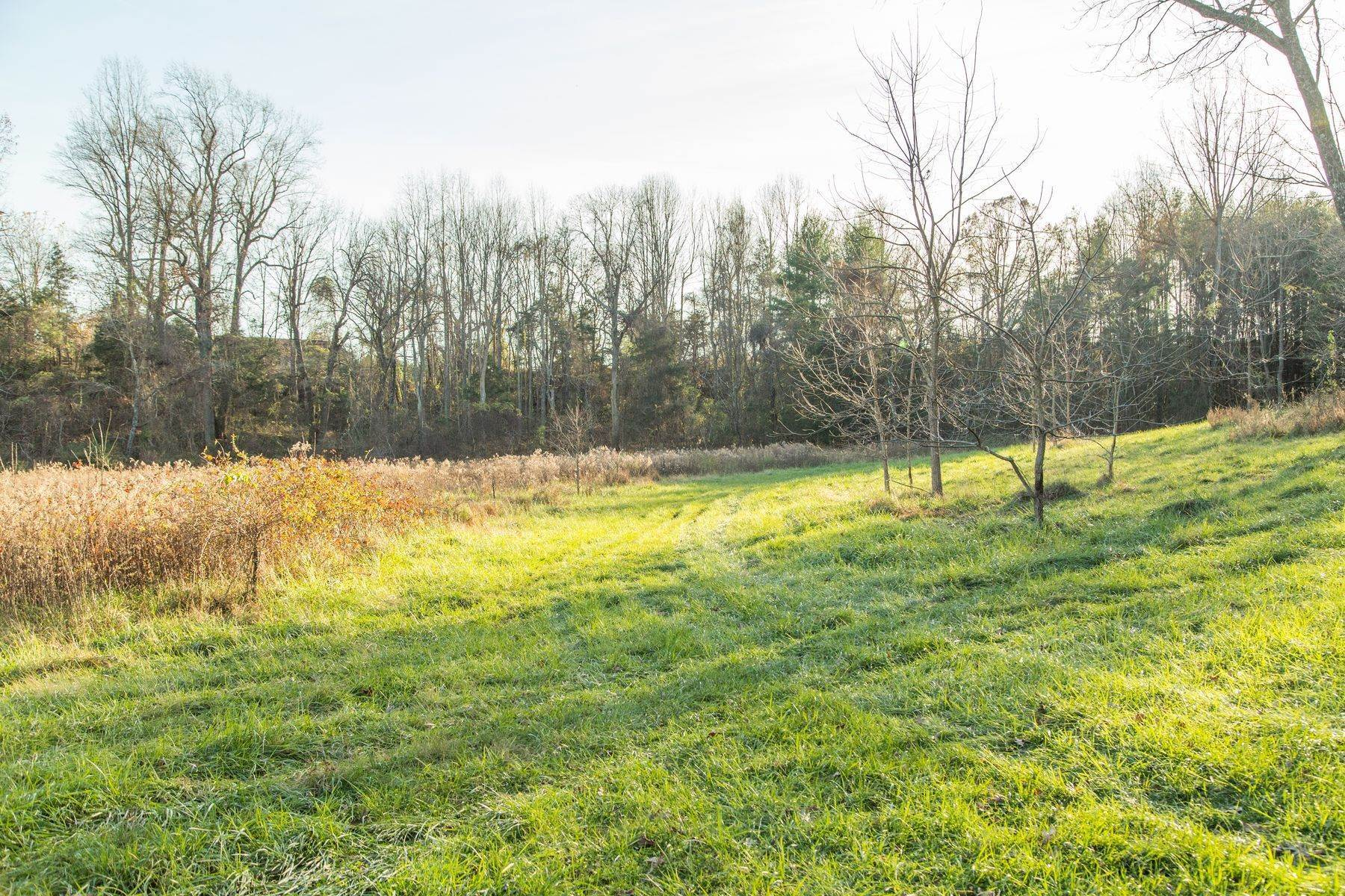 21. Land for Sale at 0 Stony Point Pass Keswick, Virginia 22947 United States