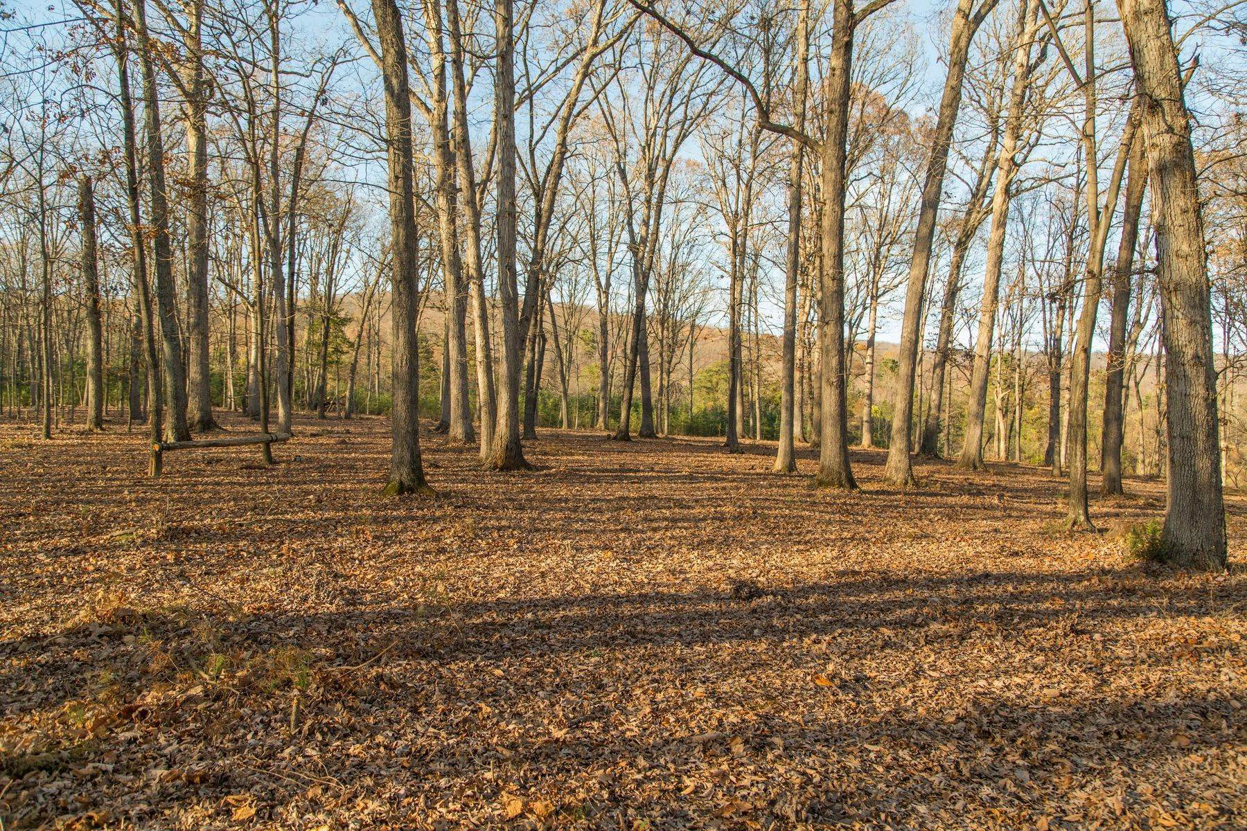 15. Land for Sale at 0 Stony Point Pass Keswick, Virginia 22947 United States