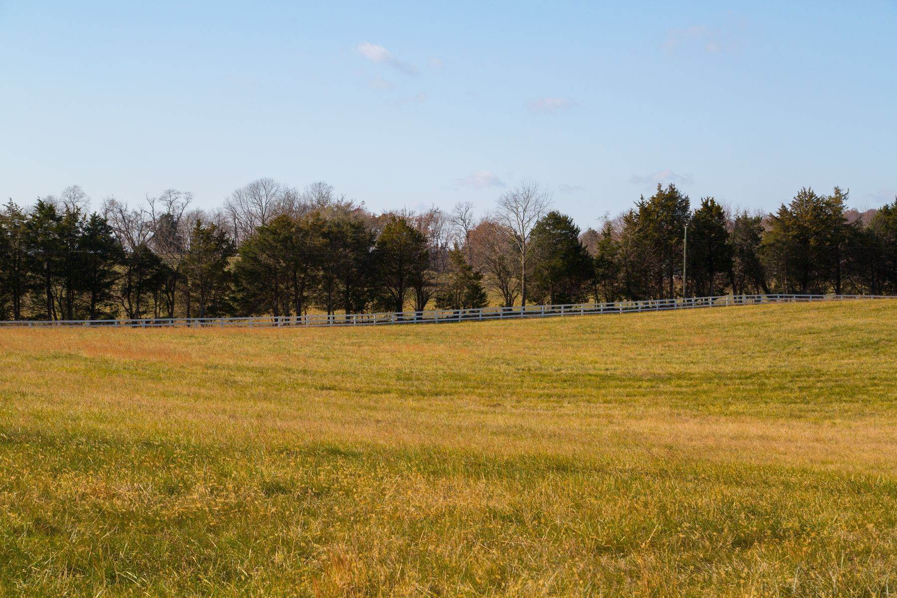 39. Land for Sale at 0 Springdale Drive Keswick, Virginia 22947 United States