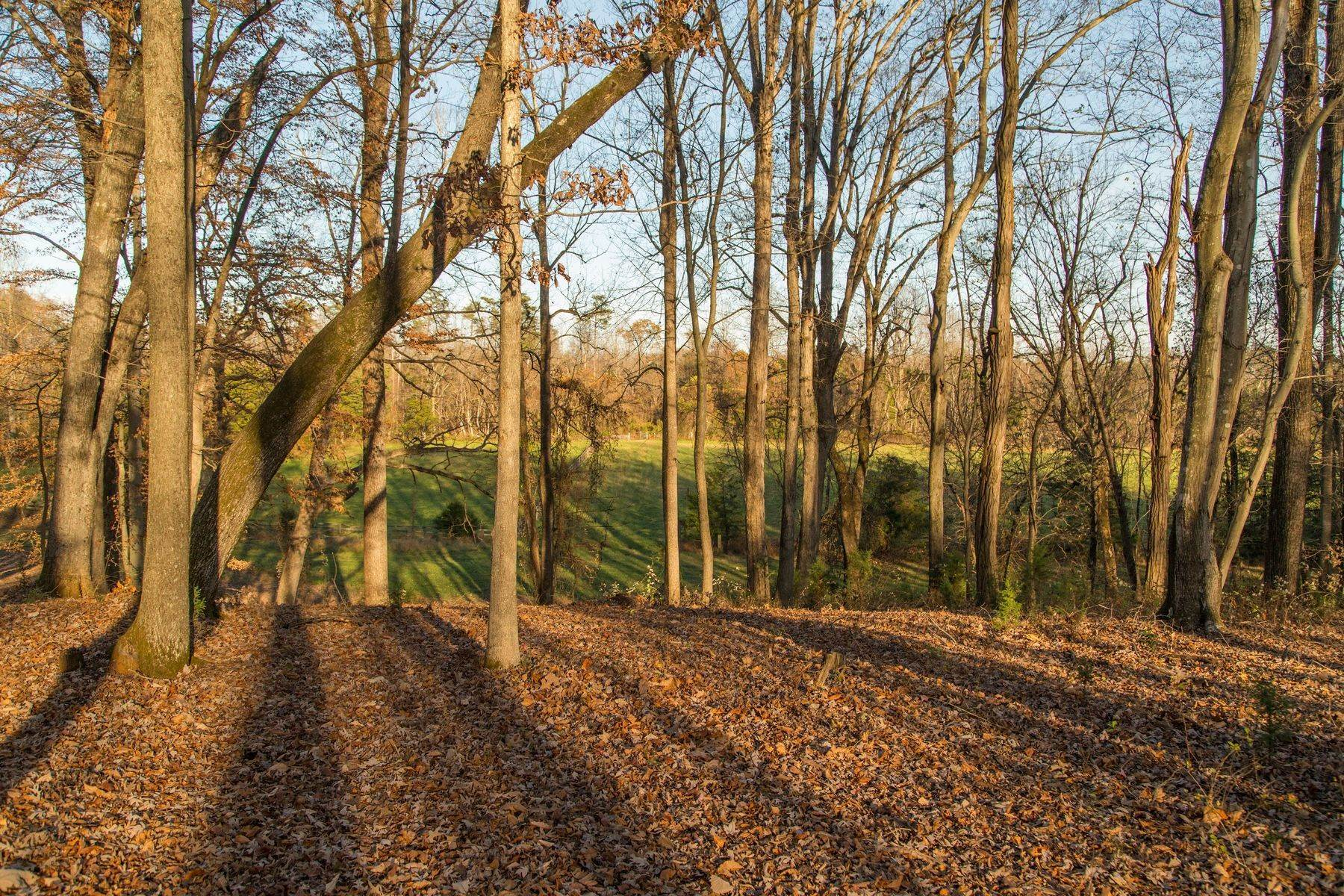 14. Land for Sale at 0 Stony Point Pass Keswick, Virginia 22947 United States