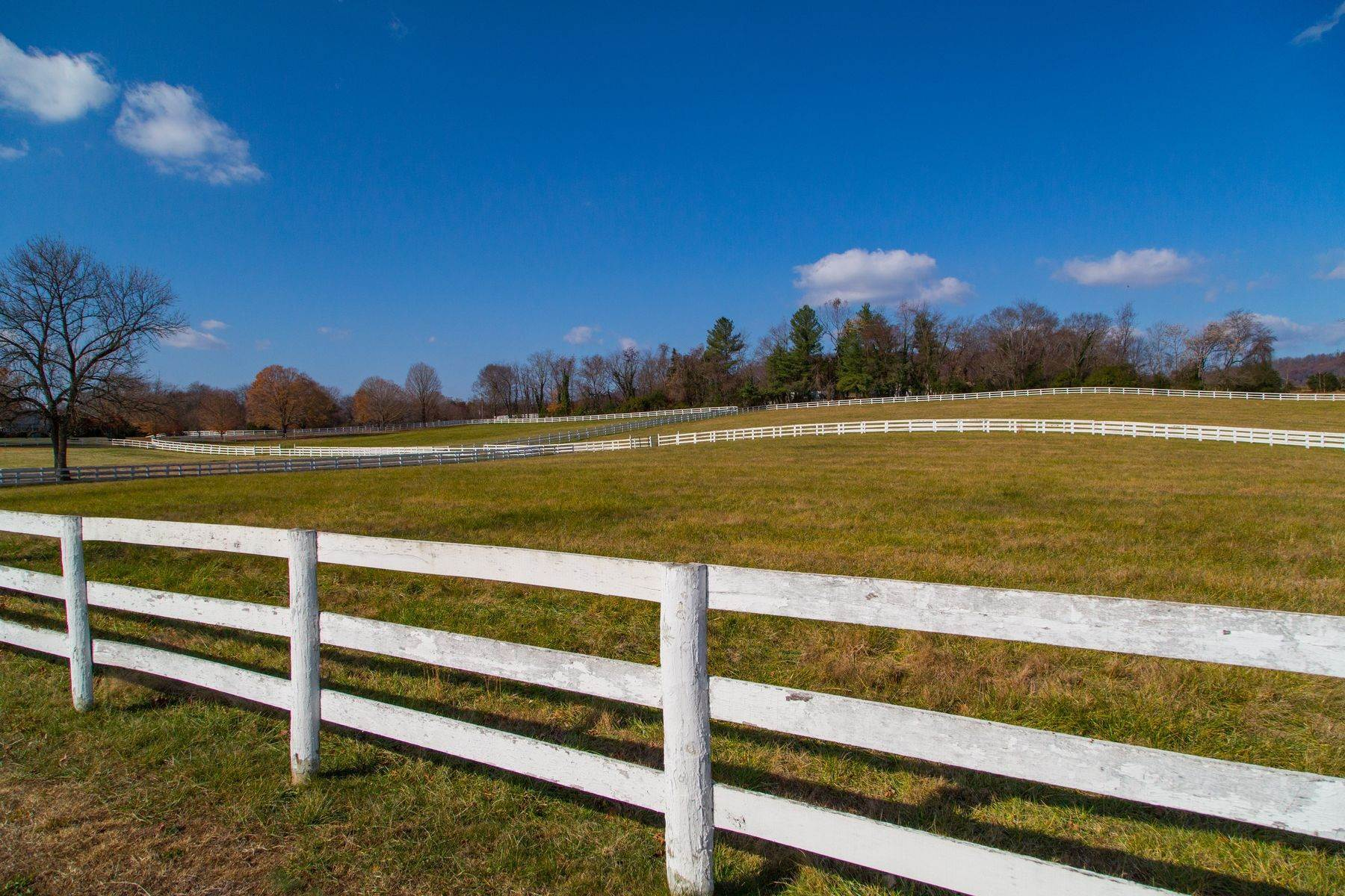 27. Land for Sale at 0 Springdale Drive Keswick, Virginia 22947 United States