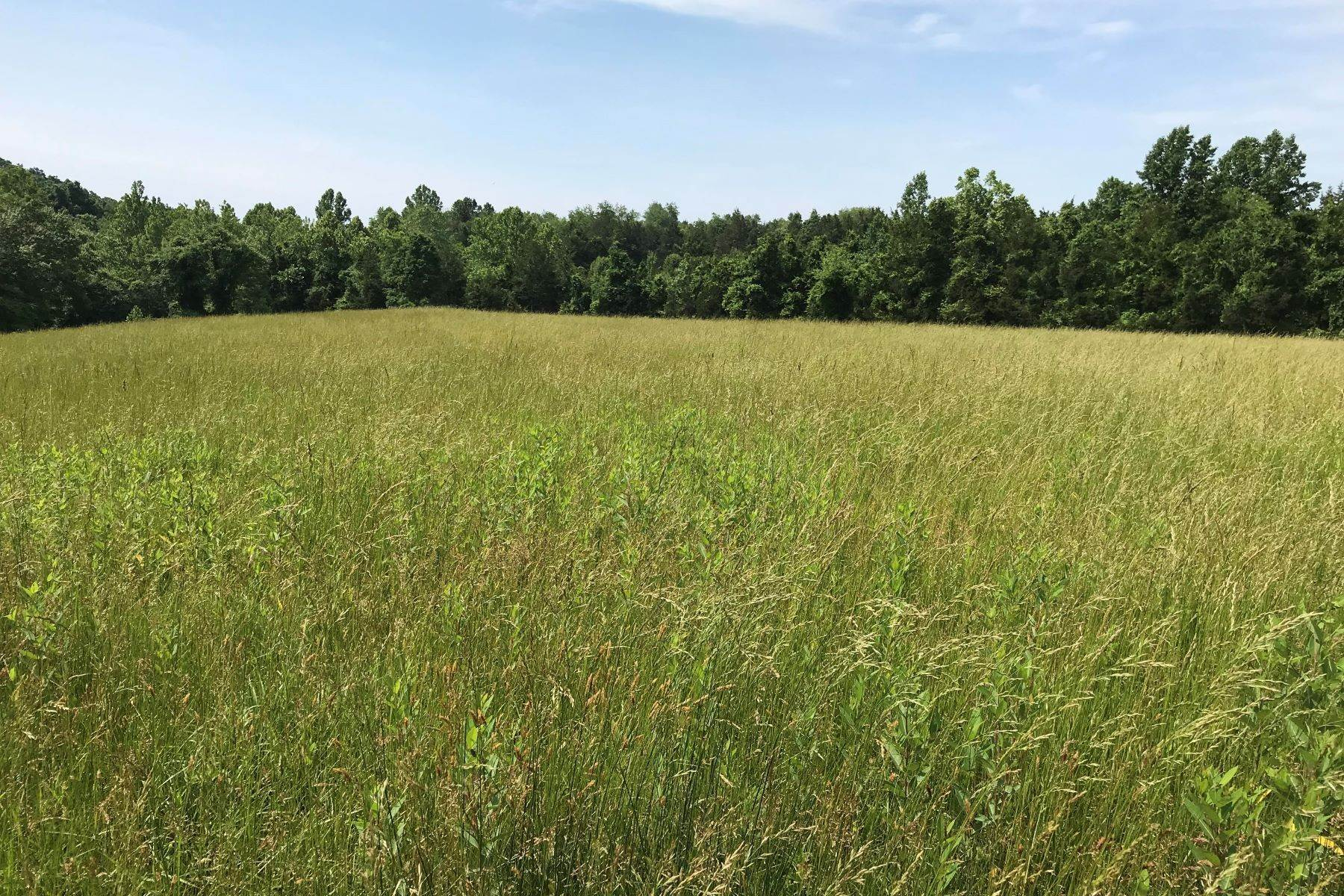 Land for Sale at Stanardsville Lot 0 Ford Ave Stanardsville, Virginia 22973 United States