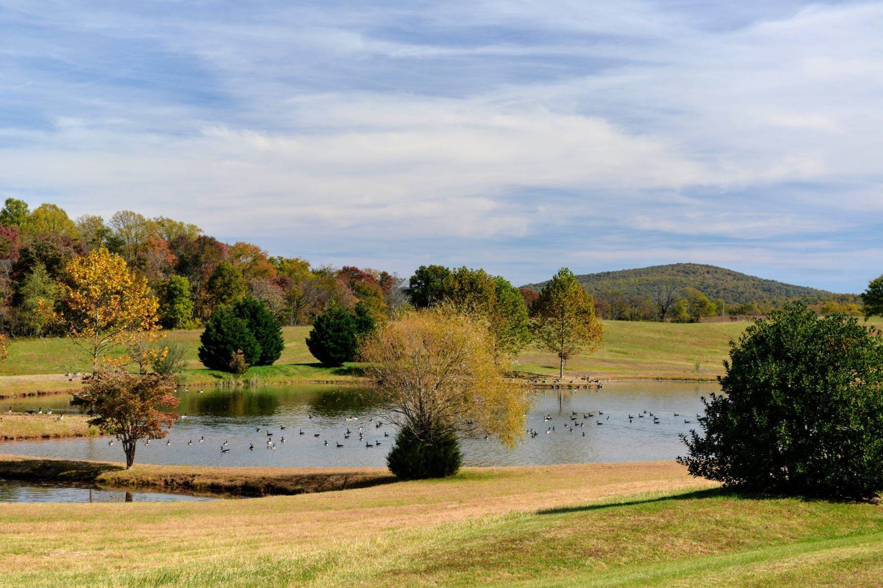 13. Single Family Homes for Sale at White Hart 5785 Stony Point Rd Barboursville, Virginia 22923 United States