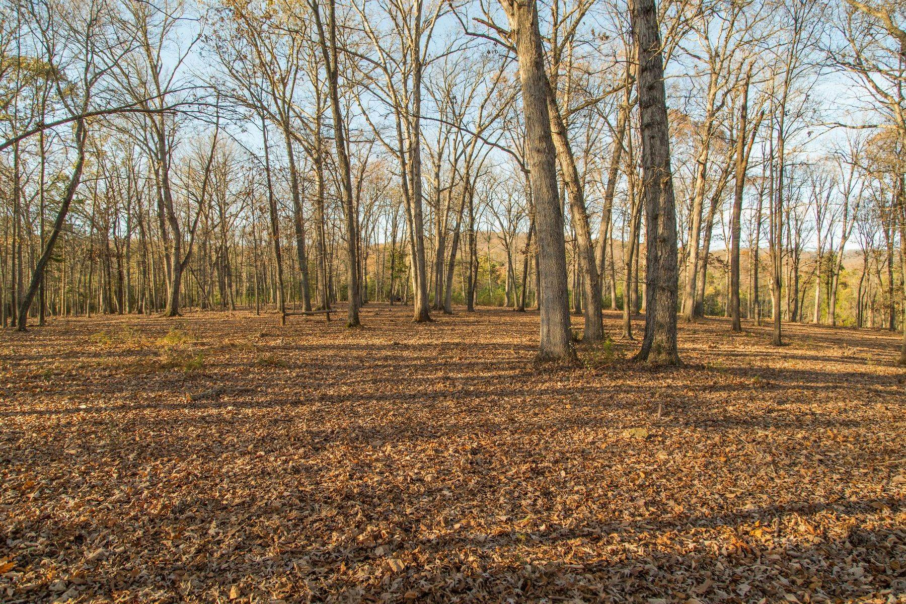 13. Land for Sale at 0 Stony Point Pass Keswick, Virginia 22947 United States