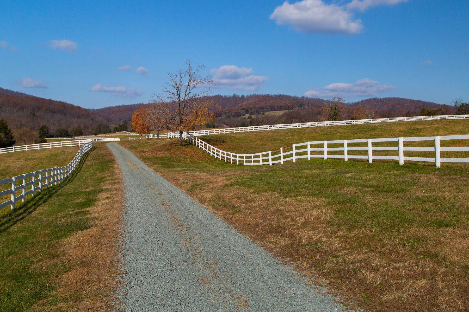 36. Land for Sale at 0 Springdale Drive Keswick, Virginia 22947 United States