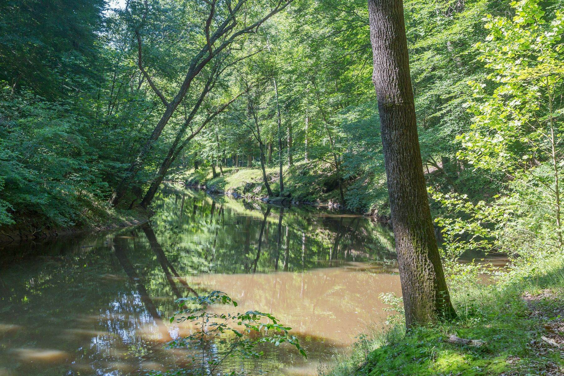 15. Property for Sale at Gardner Farm 792 E Old Mountain Rd Mineral, Virginia 23117 United States